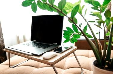 stock.adobe.com, © stock.adobe.com/Evelina