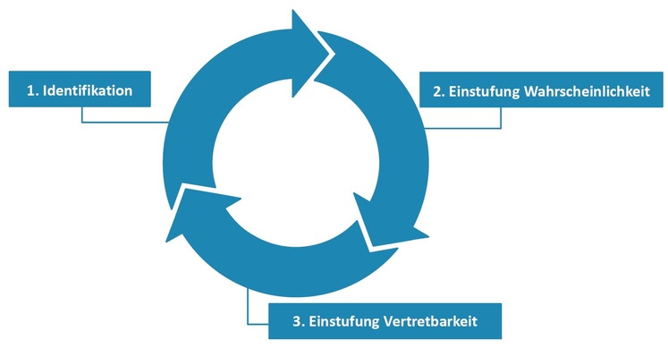 Abbildung 2: Iterative Risk Assessment Phasen, © PwC Österreich GmbH